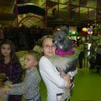 цирковые собаки