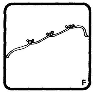 8 (916) 702–11–08 Детские фокусы и их секреты