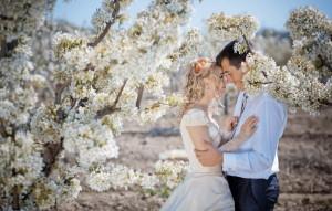 8 (916) 702–11–08 свадьба в апреле