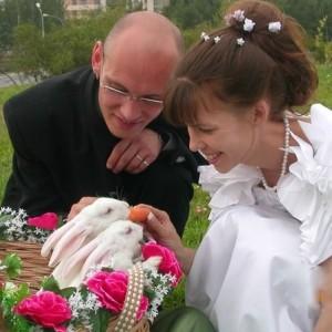 8 (916) 702–11–08 Свадебные кролики